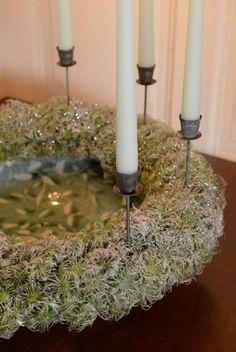 Keeping Christmas pod wreath claus dalby