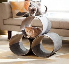 Creative Dollar: Cheap DIY Kitty Playhouses and Beds