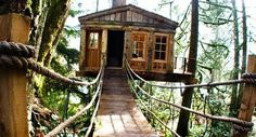A CUP OF JO: Travel Fantasy: Treehouse Point