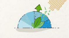 What is genetic modification? on Vimeo
