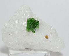 Emerald Green Pargasite Crystal Mineral Specimen by FenderMinerals
