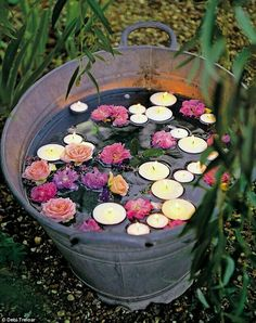 Plant water lilies in an aluminum tub to add floating lights to in the summer
