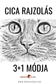 Ugye milyen szuper cica rajz? Kattints és olvasd el, hogyan rajzolhatsz cicát három különféle módon! Acrylic Pouring, Teaching Art, Animal Drawings, Art Sketches, Painting & Drawing, Geek Stuff, Star Wars, Movie Posters, Animals