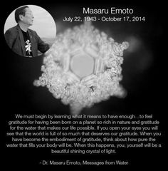 Gratitude and abundance. Thank you, Dr. Emoto!