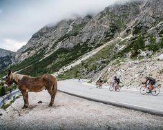 Photo Journal - Granfondo Maratona Dles Dolomites ... There is a place often found somewhere between the sweet ache of fatigue and the honest contentment of the road that every cyclist knows well. It's a feeling you can see in the faces of the participants of the 30th Maratona Dles Dolomites (to give the legendary Granfondo its local Ladin dialect title) Italy's most important Granfondo. ... #granfondomaratona #mdd29 #mdd30 #roadcycling #sportive #granfondo #dolomites
