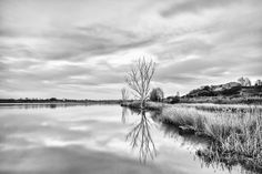 Photograph Estany d'Ivars by Abel Martinez Gallego on 500px  https://500px.com/photo/104096829/estany-d'ivars-by-abel-martinez-gallego?from=popular&only=Black+and+White