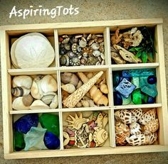 Reggio Emilia inspired Ocean Loose Parts Play Sea Treasures Tinker Tray Montessori Ocean Charlotte M - Crafting Games Design 2019 Play Based Learning, Project Based Learning, Reggio Classroom, Shells And Sand, Deep Sea Creatures, Under The Sea Theme, Small World Play, Montessori Materials, Ocean Themes