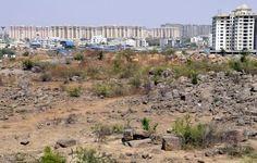 Land, development and democracy