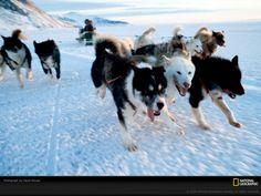 creative National Geographic photos