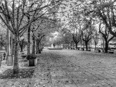 Boa tarde :D A Avenida dos Centenários (antigo Campo do Trasladário) em Arcos de