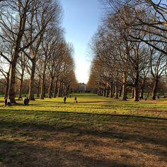 Green park  by jonny.green