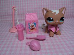 Littlest Pet Shop LPS Rare Cat+ Pink Jacket+Accessories Great 4 Gift Excellent #Hasbro