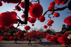 new year celebrations   ... of chinese new year celebrations.