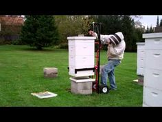 ▶ Hive Lift Demo - YouTube