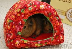 Guinea Pig Bed Pattern   fits two pigs comfortably fits one pig even more comfortably by pearl808