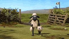via GIPHY 2000 Cartoons, Adult Cartoons, Cool Art Drawings, Animal Drawings, Cartoon Movies, Cartoon Characters, Funny Films, Shaun The Sheep, Spanish Humor