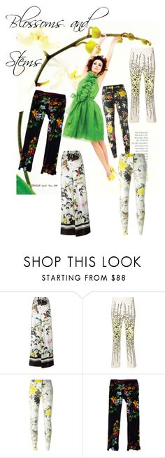 """""""Blossoms & Stems - Floral Pants"""" by erica-waddell ❤ liked on Polyvore featuring Roberto Cavalli, Giambattista Valli, Etro, floral, flower, colorful and print"""