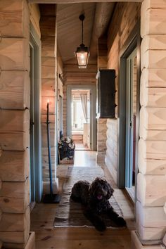 Home Decorating Websites Free Hallway Inspiration, French Countryside, Dog Design, Bordeaux, Beautiful Homes, Entrance, Garden Design, Home And Garden, Lights