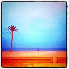 En el horizonte....la paz¡¡¡