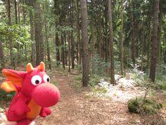 Miro in der Sächsischen Schweiz http://miros-reisen.blogspot.de/