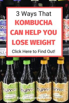 Losing weight is hard. Fortunatley, there are tools you can use to make the weight loss process a little easier, and kombucha is one of them. Drinking kombucha may be able to help you lose a significant amount of weight. If you're curious how, click on the pin to read my blog post on it! #kombucha #weightloss #diet Trying To Lose Weight, Losing Weight, Kombucha Health Benefits, How To Find Out, How To Make, Weight Loss Journey, Glass Bottles, Beer Bottle, Drinking