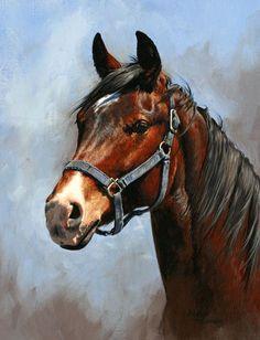 Horse painting by Adeline Halvorson - Pferd Horse Drawings, Animal Drawings, Art Drawings, Arte Equina, Horse Artwork, Horse Portrait, Pencil Portrait, Tier Fotos, Animal Paintings