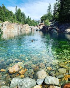 Travel In California Includes Secret Emerald Swimming Pools & Waterfalls - Narcity California Places To Visit, California Travel, Northern California, Swimming Pool Waterfall, Swimming Holes, Beautiful Places To Travel, Romantic Travel, Amazing Places, Hiking Spots