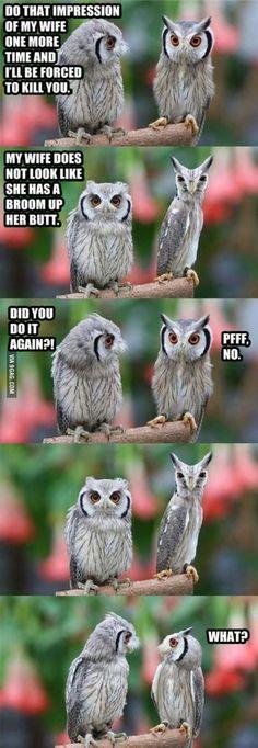 Hahahahha lmao xD