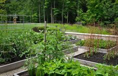 A bountiful vegetable garden designed by @Nick McCullough. The raised planters are constructed from untreated oak and filled with a soil/leaf compost mix—wonderful for producing fresh, juicy produce. Photo by Nick McCullough.