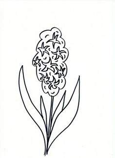 Lettering- Line drawing- Motivation: How to draw flowers 57 …