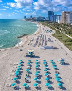 Miami Florida, Miami Beach, Miami Life, Magic City, Monday Blues, Monday Motivation, Night Life