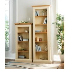 Wiltshire Painted Narrow Bookcase 4 Shelves (B346) with Free Delivery | The Cotswold Company