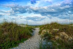 St Augustine beach - Walk through the dunes on a sandy path over the dunes to beautiful St. Augustine Beach .