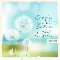 Confía en el Señor y haz el bien.  Salmo 37:3