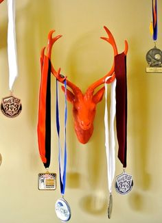 love this idea for the boys to display their medals. Go Bucks!