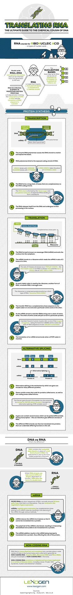 Kick Ass Resume Your Kickass Guide To A Marketable Resume Infographic  Perfect .