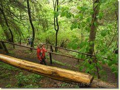 The best hiking trails in Austria. wikiloc.com