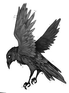 how to draw a crow or raven Crows Drawing, Bird Drawings, Animal Drawings, Crow Art, Raven Art, Bird Art, Tattoo Sketches, Tattoo Drawings, Corvo Tattoo