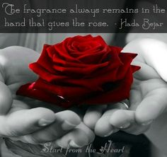 valentine quote rose