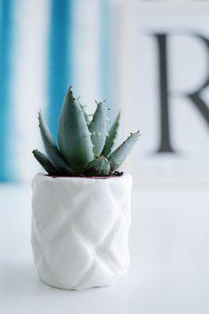 DIY Pineapple Planter styled 3
