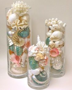 Glass Cylinders are filled with a beautiful arrangement of Seashells, Coral and Starfish to make a stunning display. Gorgeous shells and coral are artfully arranged in tall glass cylinders. The cylinders are high quality, with thick sides. You can purchase singly or as a set.