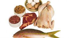 Efek Samping Kelebihan Protein