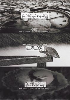 DesertRose,;,Qur'an Kareem,;,