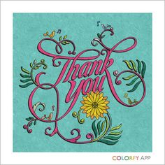 My Colorfy