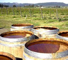 California Wine Country.