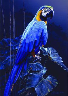 Pastime Puzzles - Blue Macaw by Daniel Smith Tropical Birds, Exotic Birds, Colorful Birds, Pretty Birds, Beautiful Birds, Animals Beautiful, Blue Macaw, Bird Artwork, Tier Fotos