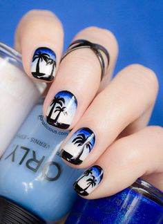 Palm Trees and Blue Sky via