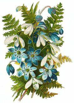 Blue flowers, snowdrops & fern bouquet
