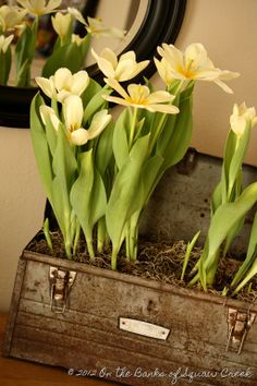 31 Days of Decorating with Junk: Five (more) from the Archives by On the Banks of Squaw Creek