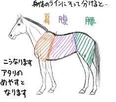 馬の胴体を三つにして考える2